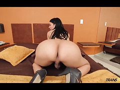 Steaming transgender princess with hungry ass and salami